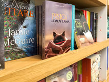 As novelas famosas as mais atrasadas para a venda em livrarias da biblioteca fotografia de stock
