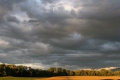 As nuvens cinzentas escuras atacam a vinda, aparecendo sobre um campo do ` s do fazendeiro das colheitas e das árvores foto de stock