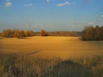 As nuvens de pressa, timelaps sobre os campos e florestas de Rússia central video estoque