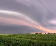 As nuvens de tempestade escurecem o céu sobre um campo do rhye Fotos de Stock Royalty Free