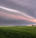As nuvens de tempestade escurecem o céu sobre um campo do rhye Fotografia de Stock Royalty Free