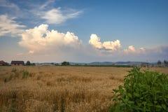 As nuvens de tempestade estão construindo sobre os montes das montanhas Carpathian na Transilvânia, Romênia imagens de stock