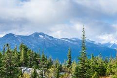 As nuvens que tocam na neve tamparam montanhas e árvores altas de cores do outono/queda imagens de stock royalty free