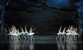As ondas da noite saem do Beira do lago-bailado O Lago das Cisnes da cisne da cisne- Foto de Stock Royalty Free