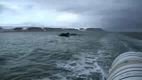 As ondas e a água arrastam a trilha do navio no oceano ártico em Svalbard Spitsbergen video estoque