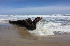 As ondas e um naufrágio no oceano suportam Fotos de Stock Royalty Free
