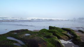 As ondas perfeitas est?o quebrando na frente da costa rochosa do deserto de Marrocos - Oceano Atl?ntico ?frica video estoque