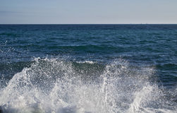 As ondas poderosas que esmagam em uma praia rochosa e no pulverizador da espuma e de água aparecem Imagem de Stock