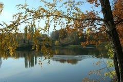 As ondinhas da lagoa na queda Fotos de Stock