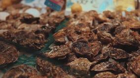 As ostras cruas nos escudos estão encontrando-se na almofada do gelo no mercado do marisco, close-up vídeos de arquivo