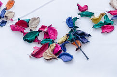 As pétalas coloridas secas das folhas dispersaram em um fundo branco sob a forma de um ângulo do triângulo Foto de Stock Royalty Free