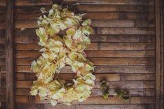 As pétalas florescem formulário o cartão do dia das mulheres do quadro do 8 de março Foto de Stock Royalty Free
