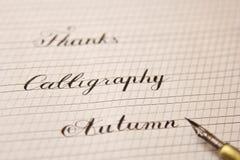 As palavras s?o escritas com uma pena de madeira da tinta em uma folha do Livro Branco com as listras tiradas fim dos artigos de  imagens de stock royalty free