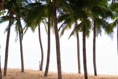 As palmas de coco e o barco de prazer vermelho velho estão no Sandy Beach branco Barcos de pesca em uma praia com palmeiras imagens de stock