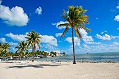 As palmas e as cadeiras de sala de estar tropicais sentam-se ao longo da margem arenosa do Oceano Atlântico em Islamorada, Florid foto de stock royalty free