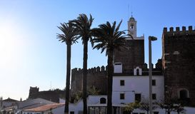 As palmeiras e o castelo imagem de stock royalty free