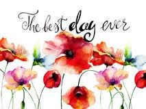 As papoilas florescem com título o melhor dia nunca Imagens de Stock Royalty Free