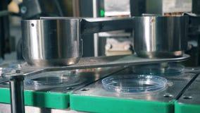 As parcelas de pães ralados estão enchendo placas plásticas Equipamento da f?brica do alimento filme