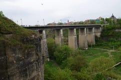 As paredes de pedra íngremes da fortaleza velha são cobertas com as flores amarelas e as árvores verdes na perspectiva do imagens de stock