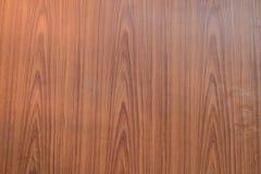 As paredes são madeira compensada Imagem de Stock Royalty Free