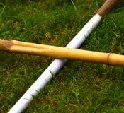 As partes de bambu com forma transversal e fundo natural fotografam Fotos de Stock Royalty Free