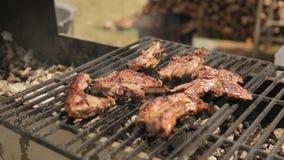 As partes de carne apetitosas cozinharam no assado com carvões filme