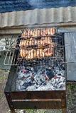 As partes de carne são grelhadas sobre carvões quentes fotografia de stock royalty free