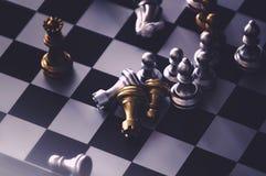 As partes de xadrez knights enfrentar-se para um suporte isolador Cavaleiros da xadrez que confrontam-se imagem de stock
