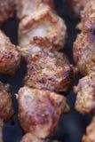 As partes frescas bonitas de no espeto fumado da carne fritaram na grade do carvão vegetal Fotos de Stock