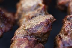 As partes suculentas frescas excelentes de no espeto da carne fritam na grade do carvão vegetal Fotos de Stock Royalty Free