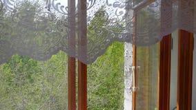 As partes superiores de árvores verdes estão balançando Olhe através da janela de madeira aberta, video estoque