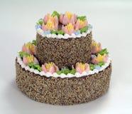 As pastelarias, bolo de chocolate Fotografia de Stock