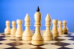 As peças do jogo de xadrez rei, os elefantes, as gralhas e os penhores são cunha Imagem de Stock