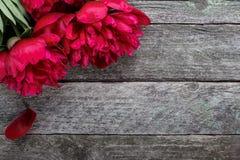 As peônias cor-de-rosa esplêndidas florescem no fundo de madeira rústico Foco seletivo Imagem de Stock Royalty Free