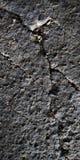 As pedras claras escuras surgem a textura fotografia de stock