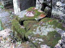As pedras das ruínas no musgo fotografia de stock