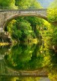 As pedras do rio da água fluem férias de verão do poder Fotografia de Stock Royalty Free