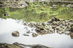 As pedras e a água surgem no rio em Suratthani Imagem de Stock