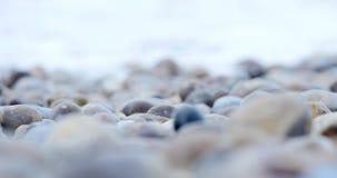 As pedras molhadas do close up na praia próximo acenam no mar filme
