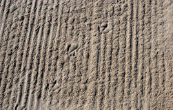 As pegadas do pássaro da gaivota na areia Imagens de Stock