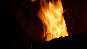 As pelotas da queimadura do fogo com serragem do abeto vermelho na entrega espalham bio páletes de madeira à caldeira moderna ind video estoque