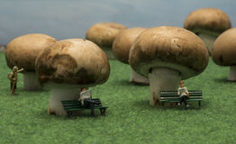 As pessoas pequenas dos fantoches sentam-se em cogumelos na floresta Foto de Stock