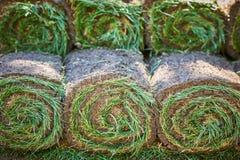 As pilhas de grama rolam para o gramado novo imagem de stock