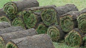 As pilhas de grama rolam para o gramado novo video estoque