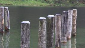 As pilhas de madeira podem ser vistas completamente a janela velha video estoque