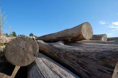 As pilhas de madeira sentam-se em uma praia que espera uma reconstrução e um repai da doca Foto de Stock Royalty Free