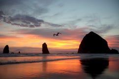 As pilhas do mar de canhão encalham, o litoral norte de Oregon fotos de stock