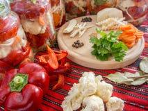 As pimentas de sino escolhidas classificaram com aipo, cenouras, pimenta, salsa, armorácio, louro Imagens de Stock Royalty Free