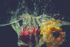 As pimentas de sino vermelhas amarelas verdes deixam cair na água com respingo Foto de Stock