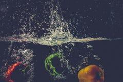 As pimentas de sino vermelhas amarelas verdes deixam cair na água com respingo Fotos de Stock Royalty Free